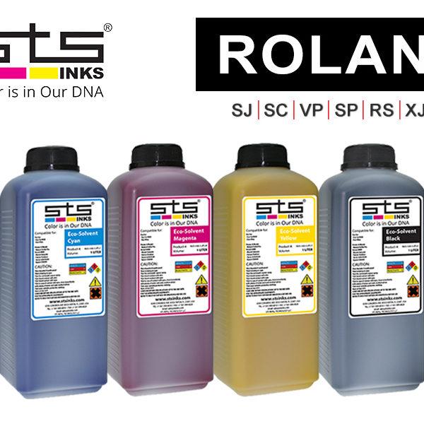sts_roland_k800